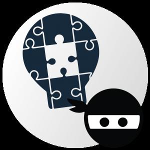 Exams Ninja platform screenshot puzzle